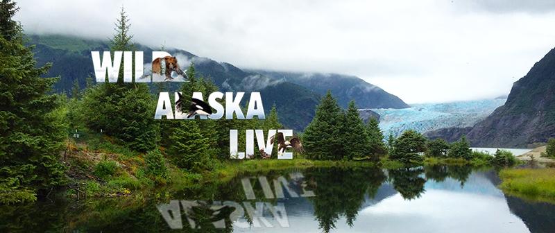 Juneau: Front and Center in Tonight's Final WILD ALASKA LIVE Segment